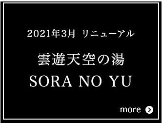 雲遊天空の湯 SORA NO YU