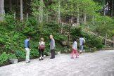 クマガイソウの見学に行ってきました゚+。:.゚ヽ(*´∀`)ノ゚.:。+゚
