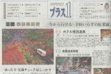 ホテル祖谷温泉が日経プラス1に掲載されました!