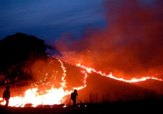 塩塚高原 春の野焼き